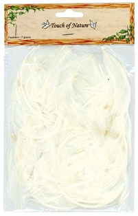 http://ep.yimg.com/ay/yhst-132146841436290/goose-satinettes-feathers-in-white-pkg-of-3-2.jpg