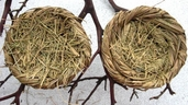 Grass Bird Nest 2.5 in. Pkgs of 3
