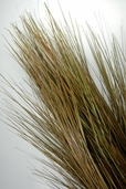 Grass Bundle Brown and Green 32 inch Tall