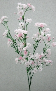 http://ep.yimg.com/ay/yhst-132146841436290/gypsophila-spray-23-75in-box-of-6-pink-2.jpg