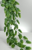 Hops Hanging Bush - 30.5in - Light Green