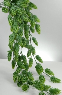 http://ep.yimg.com/ay/yhst-132146841436290/hops-hanging-bush-30-5in-light-green-3.jpg
