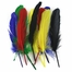 http://ep.yimg.com/ay/yhst-132146841436290/indian-feathers-pkg-of-3-4.jpg