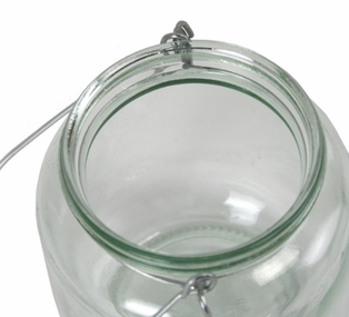 http://ep.yimg.com/ay/yhst-132146841436290/jar-with-wire-hanger-4in-clear-glass-4.jpg