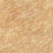 Journey's Beginning: Fur Textured Tan