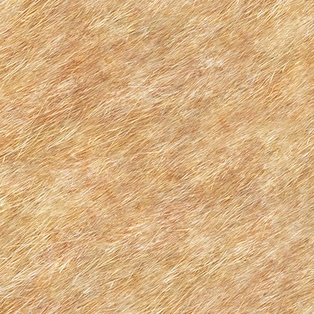 http://ep.yimg.com/ay/yhst-132146841436290/journey-s-beginning-fur-textured-tan-2.jpg