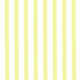 http://ep.yimg.com/ay/yhst-132146841436290/kaufman-fabrics-pimatex-basics-cotton-fabric-maize-2.jpg
