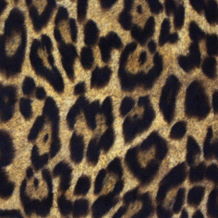 http://ep.yimg.com/ay/yhst-132146841436290/leopard-large-print-fleece-fabric-brown-7.jpg