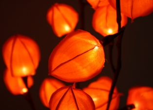 http://ep.yimg.com/ay/yhst-132146841436290/lighted-chinese-lantern-branch-31-inch-brown-6.jpg
