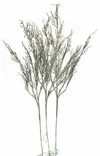 http://ep.yimg.com/ay/yhst-132146841436290/lighted-willow-branches-39-inch-champagne-glitter-6.jpg