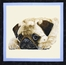 http://ep.yimg.com/ay/yhst-132146841436290/man-s-best-friend-cotton-fabric-panel-5.jpg