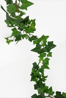 http://ep.yimg.com/ay/yhst-132146841436290/mini-english-ivy-garland-5ft-green-3.jpg