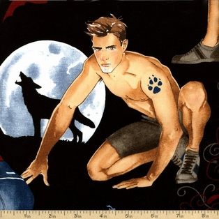 http://ep.yimg.com/ay/yhst-132146841436290/nicole-s-prints-cotton-fabric-vampires-and-werewolves-black-de-7642-a-4.jpg