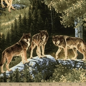Northwoods Wolf Pack Cotton Fabric - Green