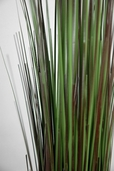 Onion Grass Green and Brown 36 inch