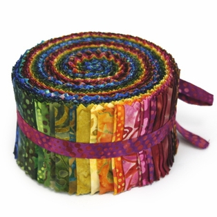 http://ep.yimg.com/ay/yhst-132146841436290/over-the-rainbow-color-wheel-jelly-roll-6.jpg