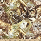 Owls of Wonder Allover Cotton Fabric