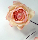 Parchment Roses (2.5 inch wide) Peach, Pink and Cream 12 - Clearance
