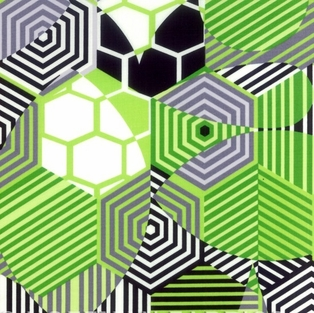 http://ep.yimg.com/ay/yhst-132146841436290/pattern-play-and-prism-break-geometric-green-2.jpg