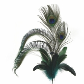 Peacock Feather Spray - 24 inch