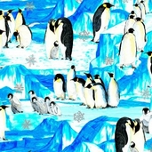 Penguins Cotton Fabric