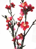 Plum Blossom Spray - 43in - Red Pink - Clearance