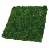 Preserved Grass Mat 12 - Green