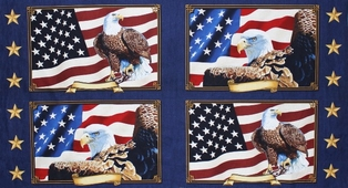http://ep.yimg.com/ay/yhst-132146841436290/quilts-of-valor-panel-4.jpg