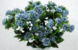 http://ep.yimg.com/ay/yhst-132146841436290/rambling-rose-18-in-pkg-of-12-blue-2.jpg