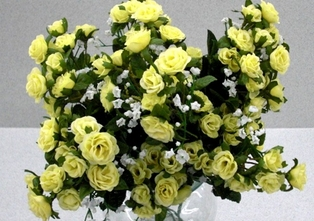 http://ep.yimg.com/ay/yhst-132146841436290/rambling-rose-18-in-pkg-of-12-yellow-2.jpg