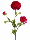 Ranunculus Spray x 3 - 27in - Beauty - Clearance