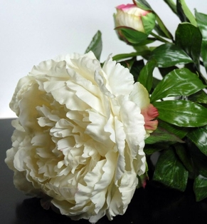 http://ep.yimg.com/ay/yhst-132146841436290/real-touch-king-peony-spray-36in-cream-2.jpg