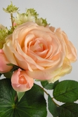 Rose and Astrantia Mixed Bouquet - Peach and Yellow - Clearance