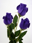 Rose Bud Spray pkg of 24 - Purple - Clearance