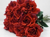 Rose Pkg of 12 - Red - Clearance