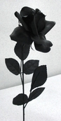 Rose Spray Open 20 in Pkg of 12 - Black