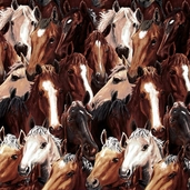 Running Free Allover Horses Cotton Fabric - Brown