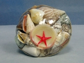 Seashell Basket - Midrib