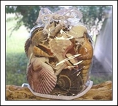 Seashell Gift Bag - Large