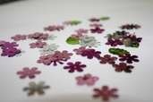 Sequins Flower Shape Mix - Pink / fuchsia / Silver / lime - Clearance Pkg of 6