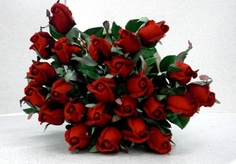 Single Rose Bud Spray - Red - Box of 24 - Clearance