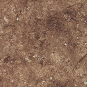 Stonehenge Magnolia Cotton Fabric - Brown