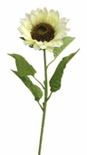 Sunflower Floral Stem 37 inch - Cream - Clearance