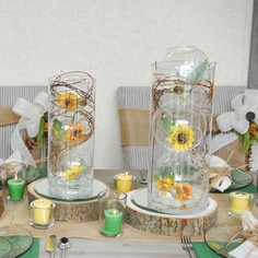 Sunflower Terrarium Cylinders