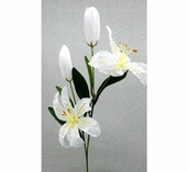 Tiger Lily Spray 26in - Pkg of 12 - White