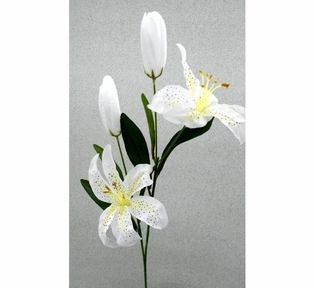 http://ep.yimg.com/ay/yhst-132146841436290/tiger-lily-spray-26in-pkg-of-12-white-2.jpg
