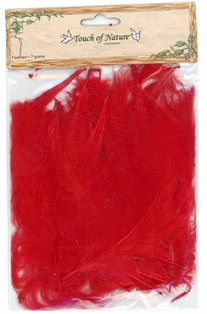 http://ep.yimg.com/ay/yhst-132146841436290/turkey-feathers-in-red-pkg-of-3-12.jpg