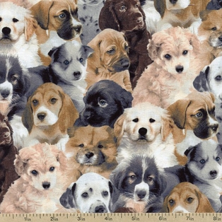 http://ep.yimg.com/ay/yhst-132146841436290/unleashed-packed-dogs-cotton-fabric-multi-33347-2.jpg