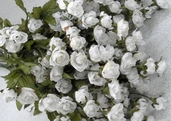 Victoria's Heart Rose Pkg of 12 - White - Clearance
