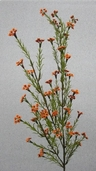 Waxflower Spray - 27 in - Box of 12 - Orange - Clearance